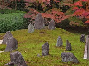 石組と苔と紅葉