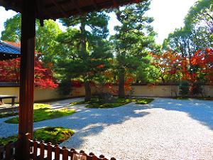 源氏庭全体の紅葉