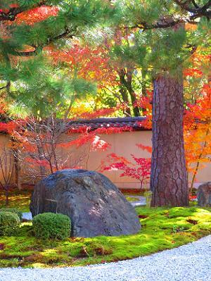 紫式部邸宅趾の石碑と紅葉