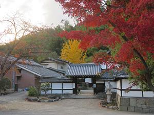紅葉と庫裡門