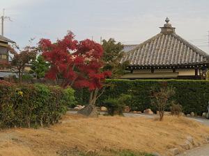 紅葉と地蔵堂