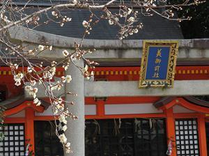 八坂神社の梅