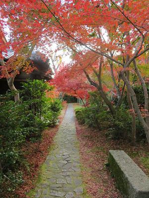 石畳と紅葉