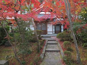 山門先の紅葉