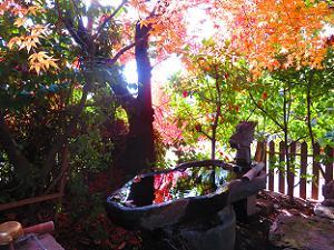 手水鉢と紅葉