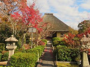 紅葉と本堂