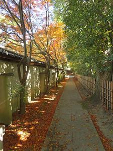 廬山寺の南側の参道