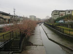 淀水路の入り口