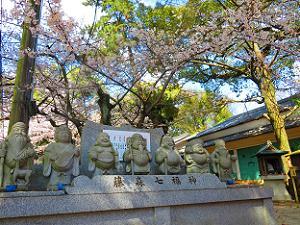 藤森七福神と桜