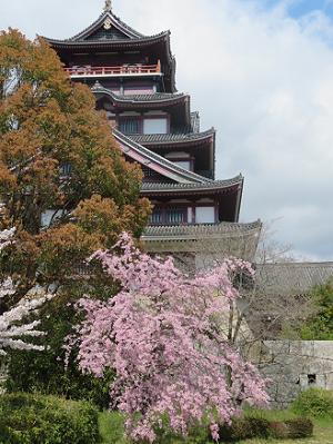 天守閣と枝垂れ桜