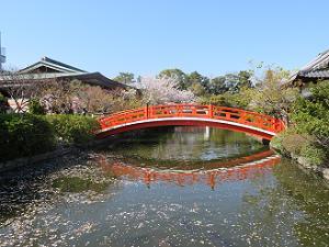 池と反り橋
