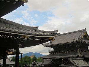 阿弥陀堂から眺める御影堂門