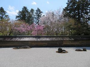 正面から見た石庭