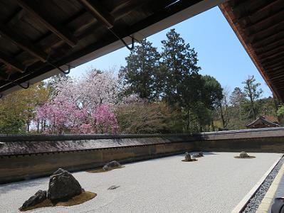 西端から見た石庭