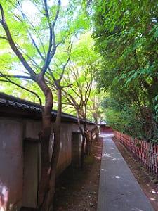 南側の参道