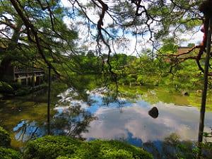 木々の間から見る栖鳳池