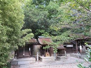 宗像神社の社殿