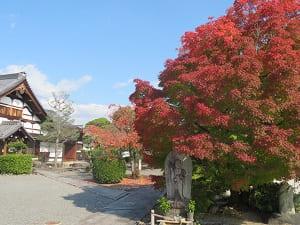 紅葉と庫裡