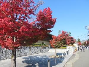 嵯峨嵐山文華館近くの紅葉