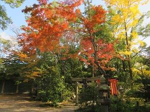 福壽稲荷神社と紅葉