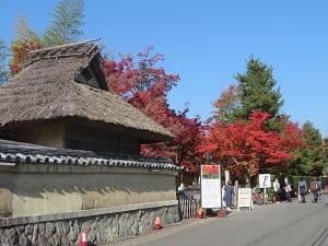 入り口付近の紅葉