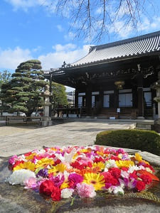 花噴水と仏殿