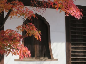 花頭窓と紅葉