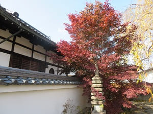 石塔と紅葉