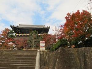 見上げる山門と紅葉