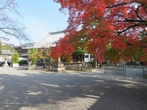 紅葉と元三大師堂