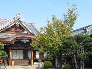 蜂須賀桜と御影堂
