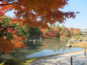 曹源池の紅葉