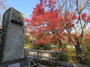 硯石と紅葉