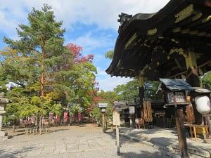 唐門と木々