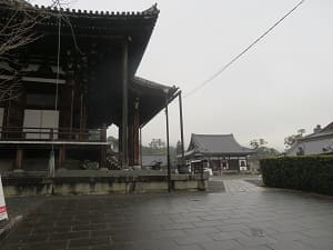 金戒光明寺の境内