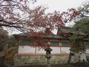 紅葉と斎場所大元宮