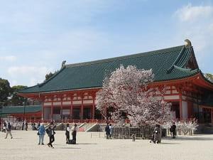 大極殿と左近の桜
