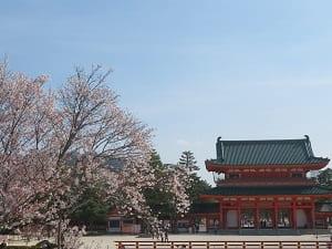 応天門と左近の桜