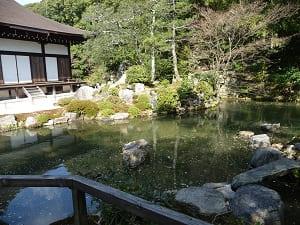大方丈前の池