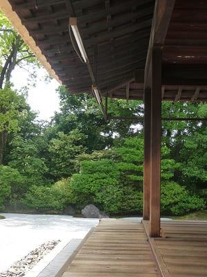 縁側と木々