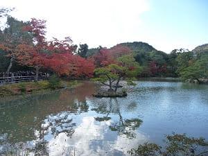 秋の鏡湖池