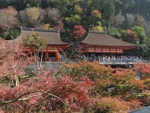 阿弥陀堂(左)と奥の院(右)