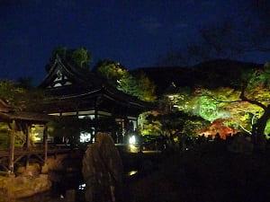 ライトアップされた蓬莱式庭園