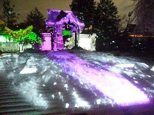 ライトアップされた方丈前庭