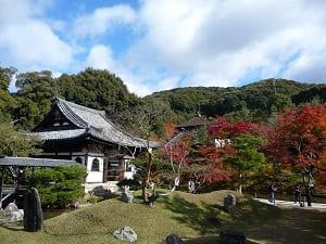 秋の蓬莱式庭園