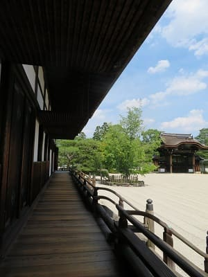 宸殿の縁側と勅使門