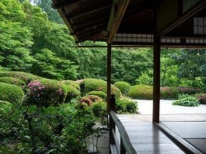 初夏の詩仙の間から見る庭園