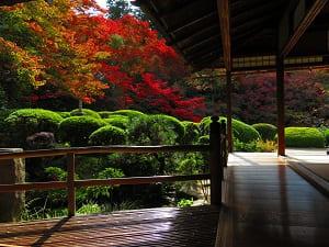 秋の詩仙の間から見る庭園