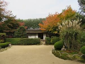 秋の下段の庭