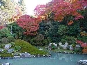 龍心池と紅葉